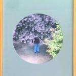 Baum by Feipeng